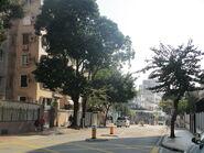 Tat Chee Avenue (2)