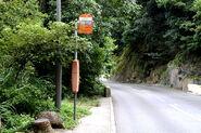 10 Mount Nicholson Road-D1