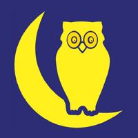 CTB Night Owl