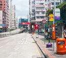 楓樹街 (長沙灣道)