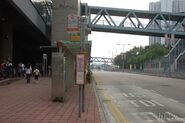 TinShuiWai-TsuiSingLau-9517
