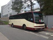 MZ9579 CUHK 2