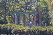 Tai Po Waterfront Park-N(0223)