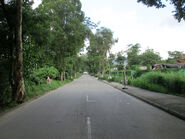 Ping Che Road North2 20160715