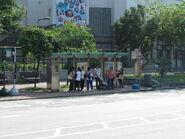 Tin Shui Wai Park 2