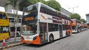 SW9081 E34A