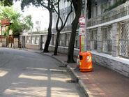 Concordialutheranschool Begonia1 1309