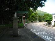 Wo Hing Road