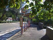 Tai Po Public Swimming Pool
