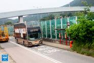 Tai Hang Tai Po 20160615