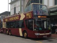 2 Big Bus Green route 04-02-2017