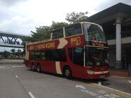 10 Big Bus red route 3