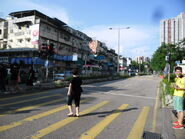 LungSum SanHong