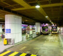 中港碼頭總站