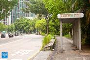 Wo Hing Tsuen Wah Ming Road 20160615 2