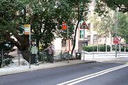 BPR Green Lane Court-1