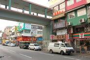 SheungShui-LungSumAvenue-0457