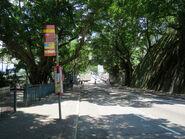 Sai Ning Street3 20180601