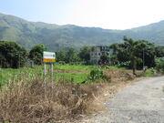 Yau Tam Mei A17