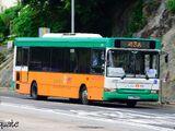新巴43A線