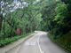 Tai O Mun Road near TWTR 20170705