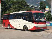 Jackson Bus CY8638 MTR Free Shuttle Bus S1A 01-10-2019