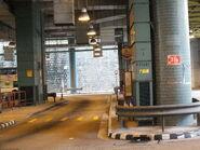 Shek Lei Tai Loong Street 20130406-3