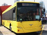 BCOY11b Huangbus