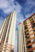 Shak Kip Mei Estate(0213)