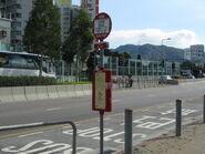 Sereno Verde Shap Pat Heung Road