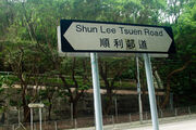Shun Lee Tsuen Road 20160419