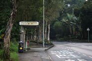Fong Ma Po (Lam Tsuen Wishing Tree)-W