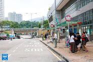 Tai Po Hui Market 20161010