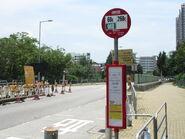 Ma Tin Tsuen 20130519-3