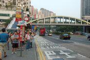 WongTaiSin-ShatinPassRoad-9135
