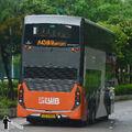 UD3393-A43-Rear