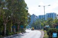 Yuen Shin Road 20190214 3