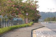 Shatin-ChongSanRoad2-North-0206