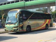 Lung Wai Tour GS6399 MTR Free Shuttle Bus S1A 01-10-2019
