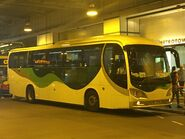 Kwoon Chung EK1934 MTR Free Shuttle Bus TKL3 10-10-2019