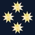 Collar Pin RMN Fleet Admiral.png
