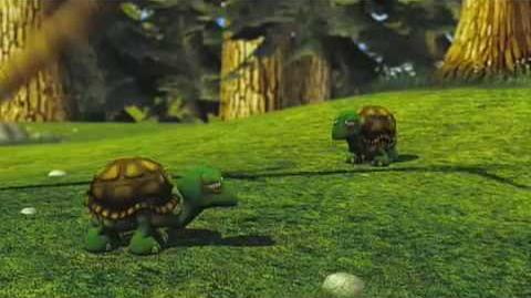 Hoodwinked Tortoises RUNN!!