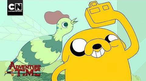 Treasures Revealed - San Diego Comic Con - Adventure Time - Cartoon Network