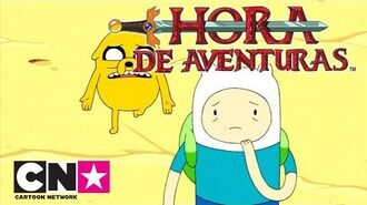 Hora de Aventuras Estaciones rana Verano Cartoon Network