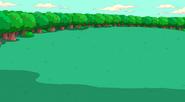 Greenery Outside Tree Trunks' House