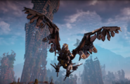 Stormbird-Flight