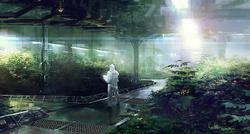 Aether Hydroponic Gardens