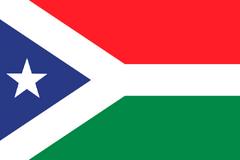 NAU Flag