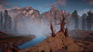 Three dead trees 1