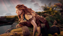 Aloy training